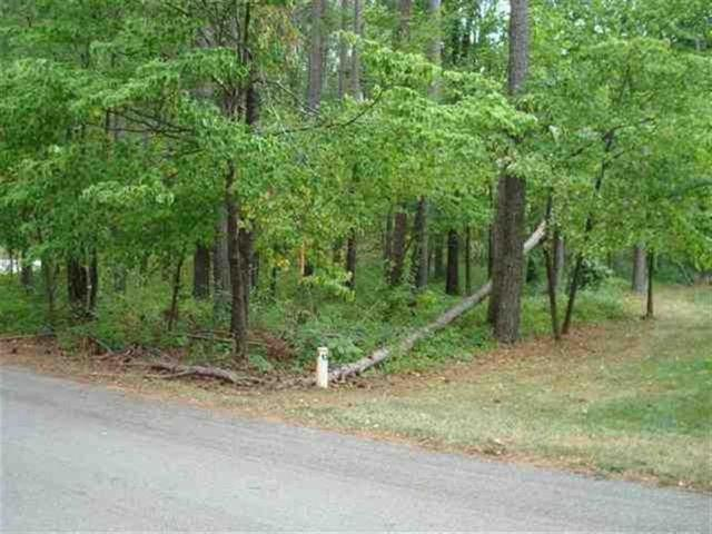 Lot 136 Island Pine, Seneca, SC 29672 (MLS #20150316) :: Lake Life Realty