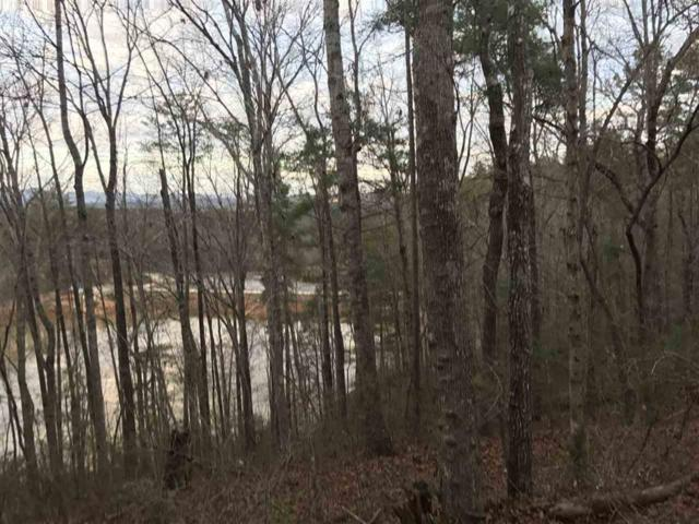 Lot 1 Whitewater Lake Drive, Tamassee, SC 29686 (MLS #20183505) :: The Powell Group of Keller Williams