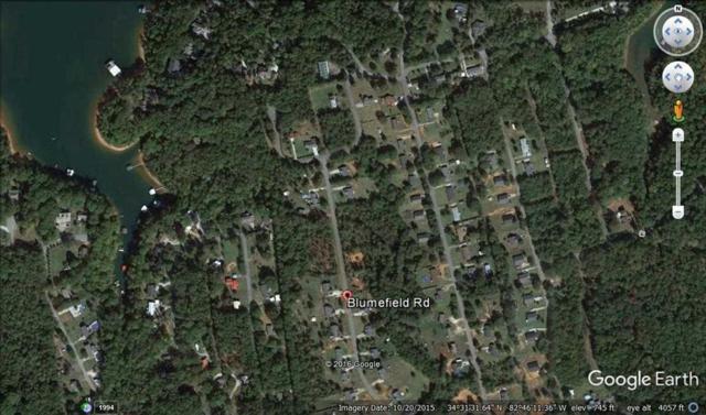 1021 Blumefield Road, Anderson, SC 29625 (MLS #20184759) :: Tri-County Properties