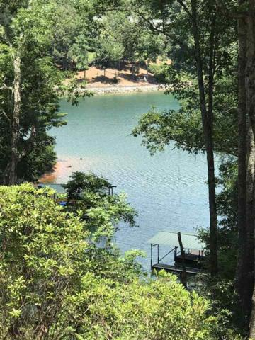 E18 Lake View Court, Salem, SC 29676 (#20190774) :: Connie Rice and Partners