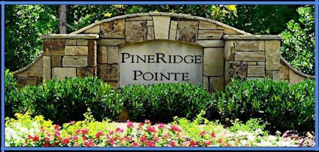 103 Pineridge Pointe Drive, Seneca, SC 29672 (MLS #20195515) :: The Powell Group of Keller Williams