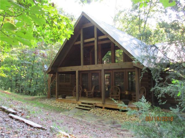 113 Bluebird Lane, Salem, SC 29676 (MLS #20200561) :: Les Walden Real Estate