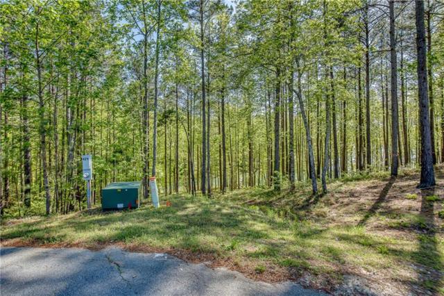 429 Pileated Woodpecker Lane, Sunset, SC 29685 (MLS #20202936) :: Tri-County Properties