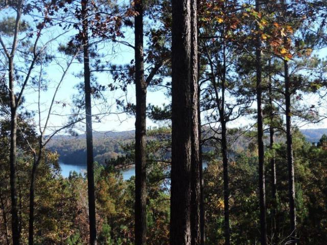 333 Long Cove Trail, Salem, SC 29676 (MLS #20218860) :: Allen Tate Realtors