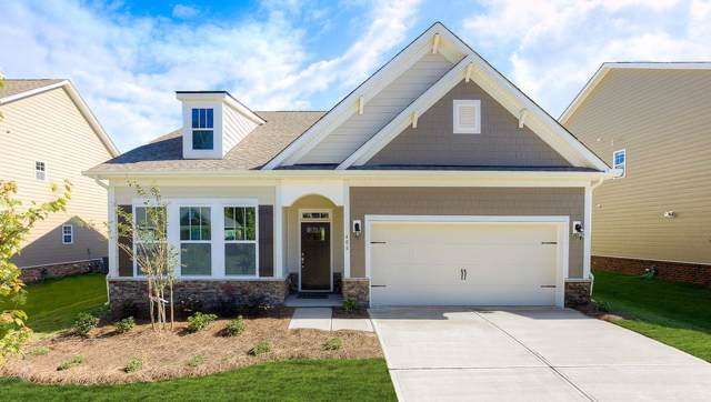 141 Cypress Hollow Drive, Anderson, SC 29621 (MLS #20224234) :: The Powell Group