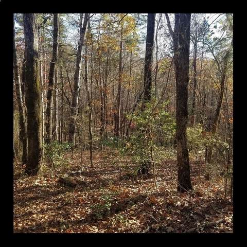 Lot #8 Beacon Ridge Circle, Salem, SC 29676 (#20234302) :: Expert Real Estate Team