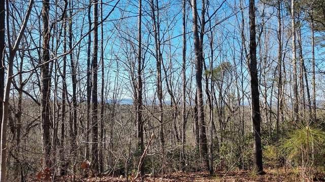 329 Long Cove Trail, Salem, SC 29676 (#20237225) :: DeYoung & Company
