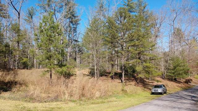 201 Pitcher Plant Lane, Sunset, SC 29685 (MLS #20237849) :: The Powell Group