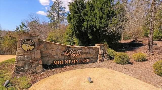 365 Blue Bonnet Trail, Marietta, SC 29661 (MLS #20239458) :: The Freeman Group