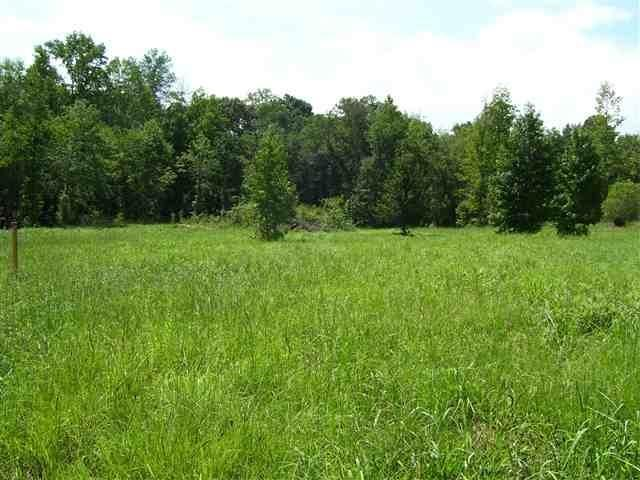 Lot 1 Weeping Willow Drive, Easley, SC 29642 (MLS #20159403) :: Tri-County Properties