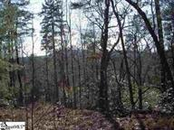 lot 56 Cherokee Hills Drive, Pickens, SC 29671 (MLS #20160171) :: The Powell Group