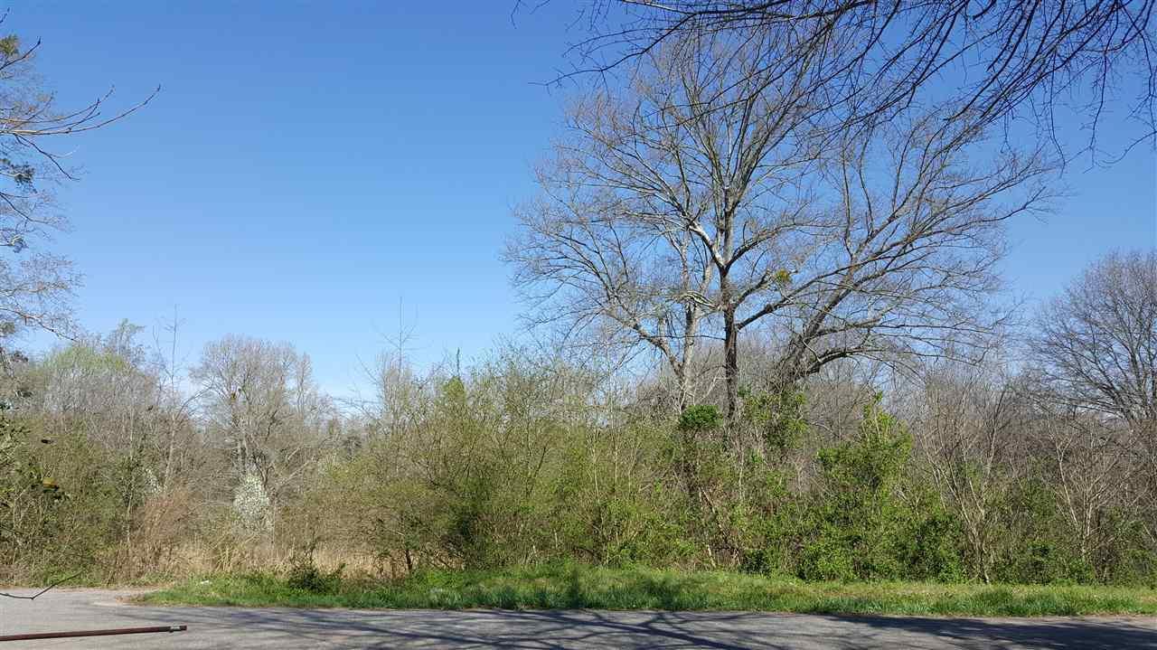 Spear Rd, Pendleton, SC 29670 (MLS #20175095) :: Les Walden Real Estate