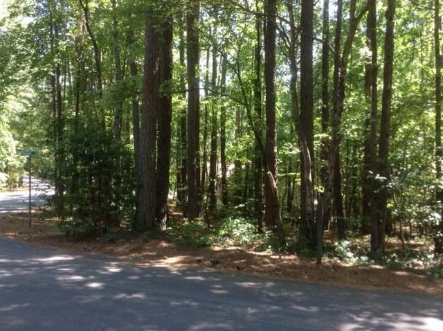 1 Passage Lane, Salem, SC 29676 (MLS #20175689) :: Les Walden Real Estate