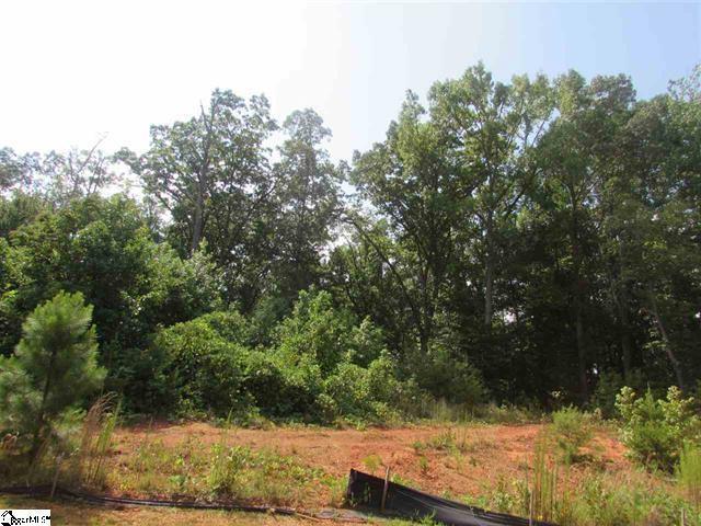 239 Audubon Acres Drive, Easley, SC 29642 (MLS #20178715) :: Les Walden Real Estate