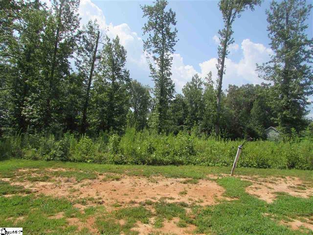 219 Audubon Acres Drive, Easley, SC 29642 (MLS #20178717) :: Les Walden Real Estate