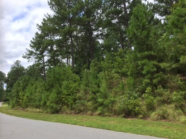 416 Pileated Woodpecker, Sunset, SC 29685 (MLS #20190890) :: Tri-County Properties