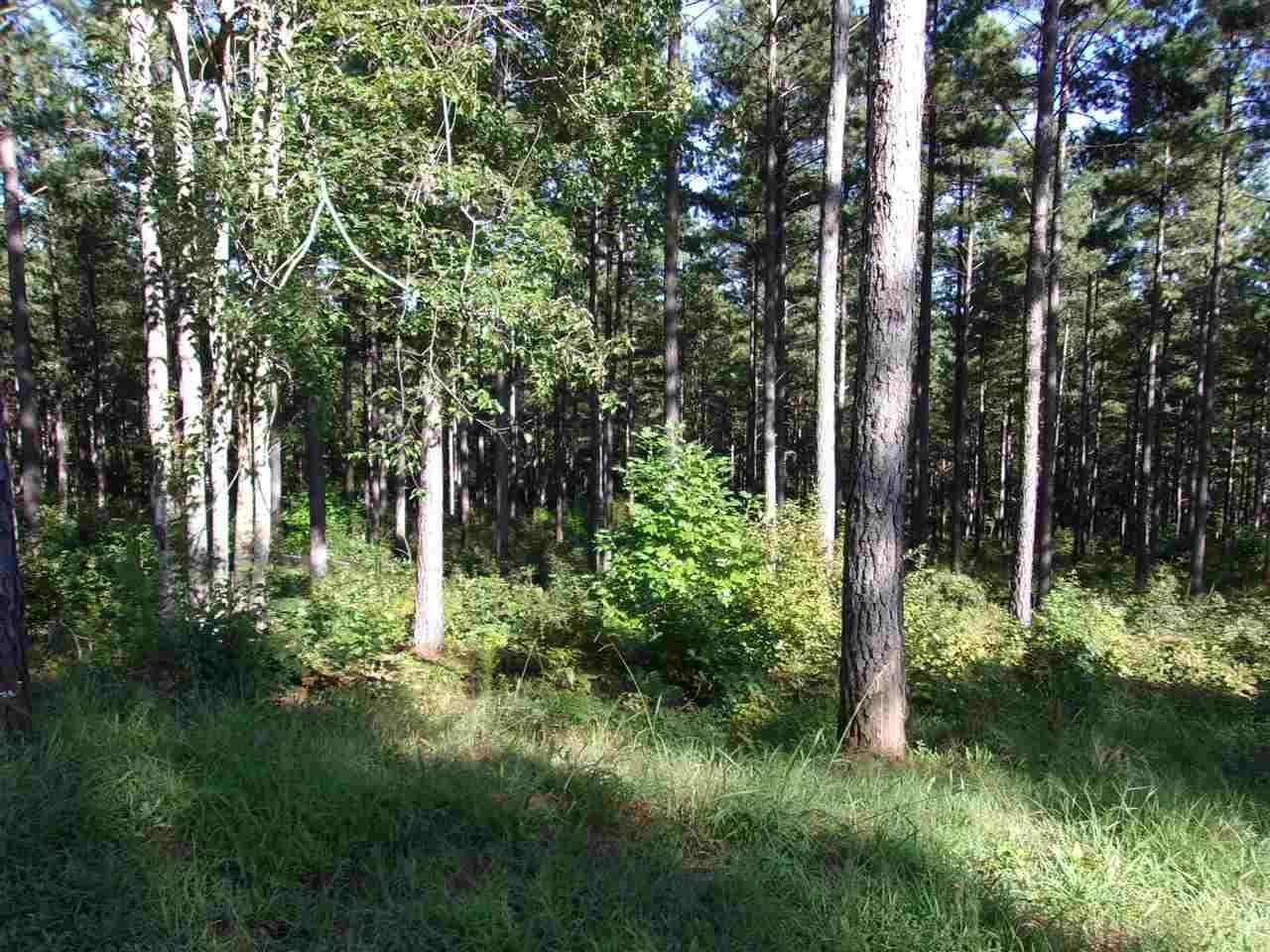 Lot 62 High Pines Drive - Photo 1