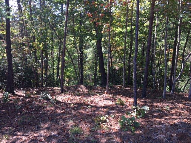 231 South Lake Drive, Sunset, SC 29685 (MLS #20192872) :: Tri-County Properties