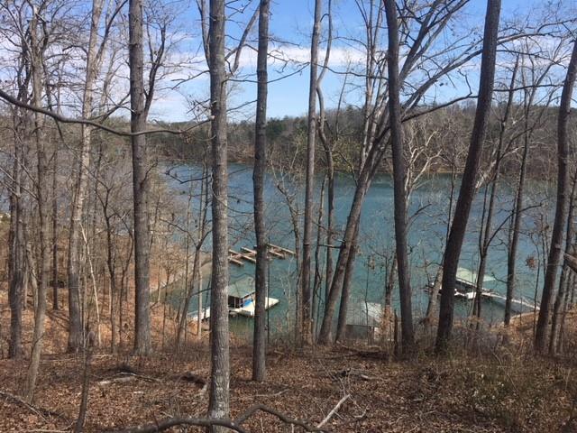 238 Mountain View Pointe Drive, Seneca, SC 29672 (MLS #20201035) :: Les Walden Real Estate
