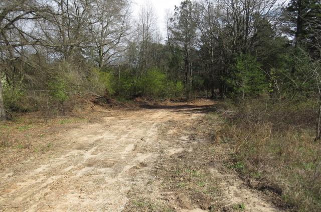 0 Shiloh Road, Piedmont, SC 29673 (MLS #20201107) :: The Powell Group of Keller Williams