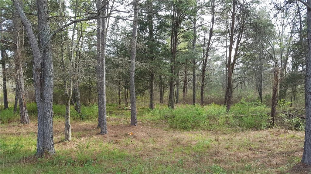 9.44 acres Richland Road - Photo 1