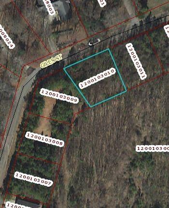Lot 6 Giles Street, Anderson, SC 29621 (MLS #20203202) :: Les Walden Real Estate