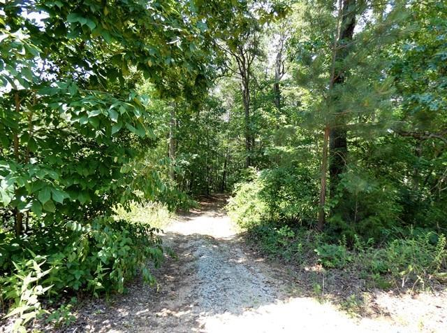 Lot 15, 16 South River Trail, Martin, GA 30557 (MLS #20203938) :: The Powell Group of Keller Williams