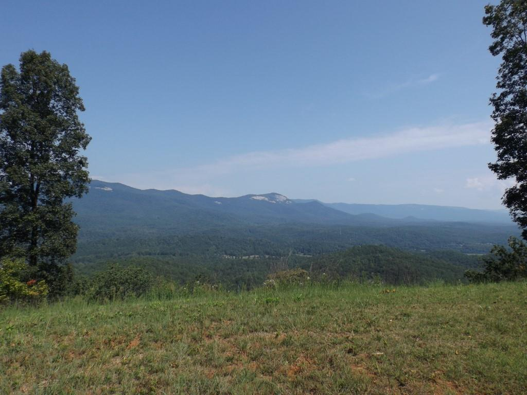 26.27 acs Scenic Mountain Drive - Photo 1