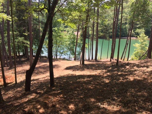 9 Bear Creek Valley Court, Sunset, SC 29685 (MLS #20205238) :: Tri-County Properties