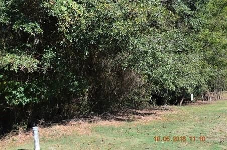 102 Grand Oak Circle, Pendleton, SC 29670 (MLS #20208875) :: The Powell Group of Keller Williams