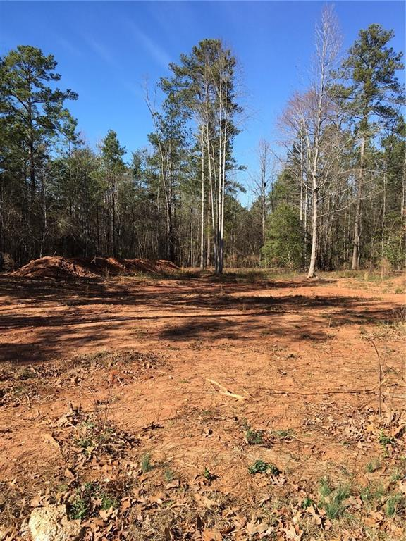 219 Thomas Welborn Road, Anderson, SC 29625 (MLS #20209038) :: The Powell Group