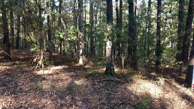 Lot 2 Jocassee Falls, Salem, SC 29676 (MLS #20209345) :: The Powell Group of Keller Williams