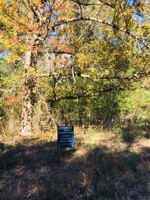 1003 Waterside Drive, Easley, SC 29642 (MLS #20209484) :: Tri-County Properties