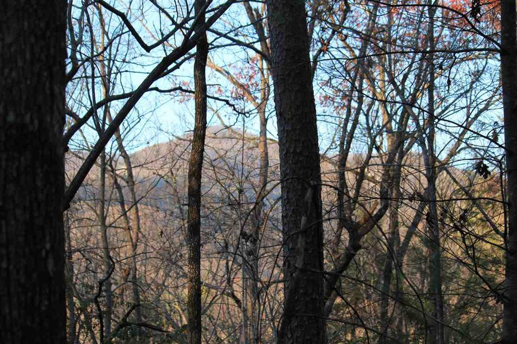 261 Cherokee Hills Drive - Photo 1