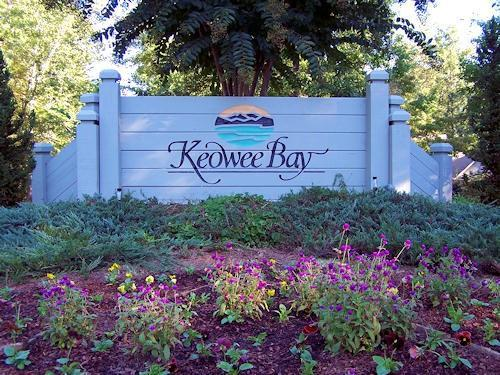 514 Keowee Bay Circle, Salem, SC 29676 (#20210310) :: Connie Rice and Partners