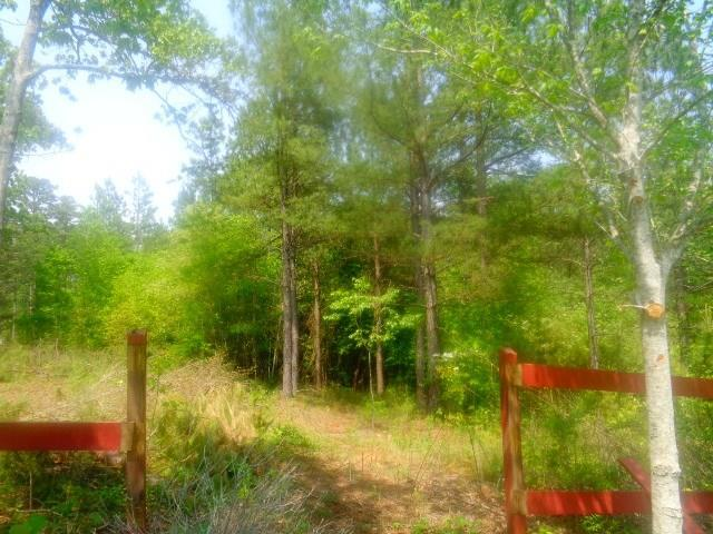 Lot 61 Sweetwater View Road, Seneca, SC 29672 (MLS #20212887) :: The Powell Group