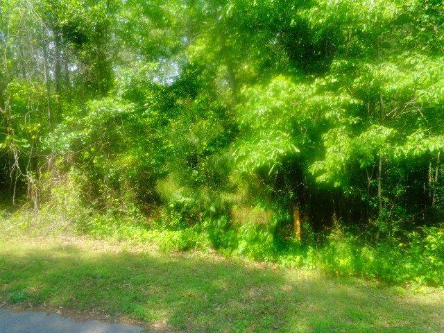 Lot 63 Sweetwater View Road, Seneca, SC 29672 (MLS #20212889) :: The Powell Group