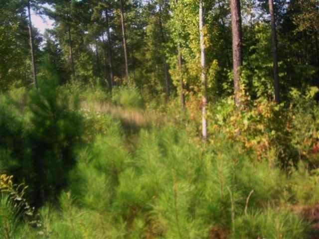 HR45 Cliffs Falls Road, Salem, SC 29676 (MLS #20213422) :: Tri-County Properties