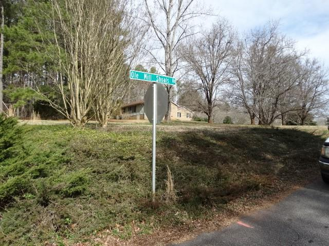 Lot 11 Lot 11 Ole Mill Shoals Road, Central, SC 29630 (MLS #20213666) :: Tri-County Properties