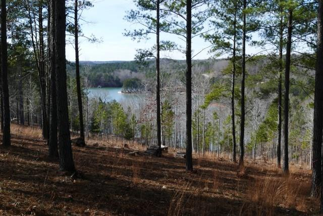 Lot 54 Highland Ridge Road, Salem, SC 29676 (MLS #20214593) :: The Powell Group