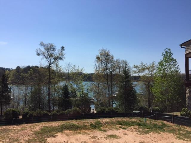 127 Village Point Drive, Sunset, SC 29685 (MLS #20215799) :: Tri-County Properties