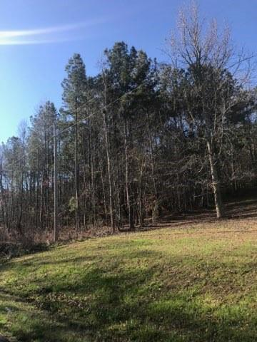 0 Terrapin Crossing Road, Six Mile, SC 29682 (MLS #20216142) :: The Powell Group