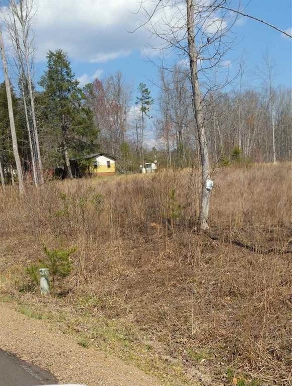 2475 Moorefield Memorial Highway - Photo 1