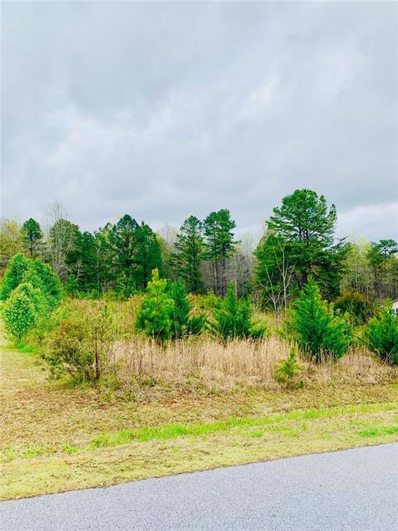 405 Pawnee Drive, Walhalla, SC 29691 (#20217794) :: Connie Rice and Partners