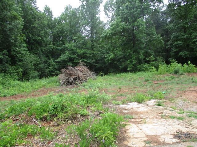 190 Hamilton Lane, Liberty, SC 29657 (MLS #20217817) :: Les Walden Real Estate