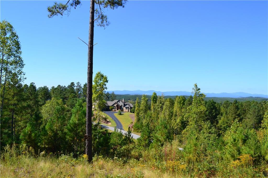 115 Hickory Springs Way - Photo 1
