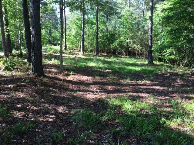 Lot 1-17 Scenic Crest Way, Six Mile, SC 29682 (MLS #20217952) :: Tri-County Properties