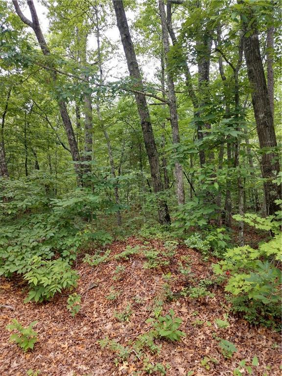 00 Ross Mountain Road, Mountain  Rest, SC 29664 (MLS #20219096) :: Tri-County Properties