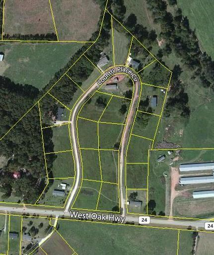 Lot 20 Country Place Circle, Seneca, SC 29678 (MLS #20219945) :: The Powell Group
