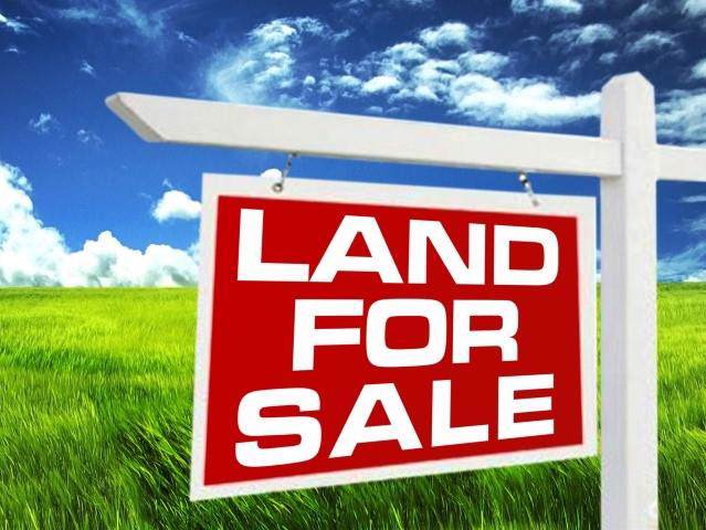 Lot 36 Whitehall Road, Anderson, SC 29625 (MLS #20221187) :: Les Walden Real Estate